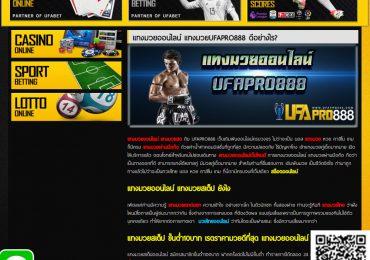 แทงมวยออนไลน์-ufapro888